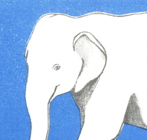 Illustration »Elefant«