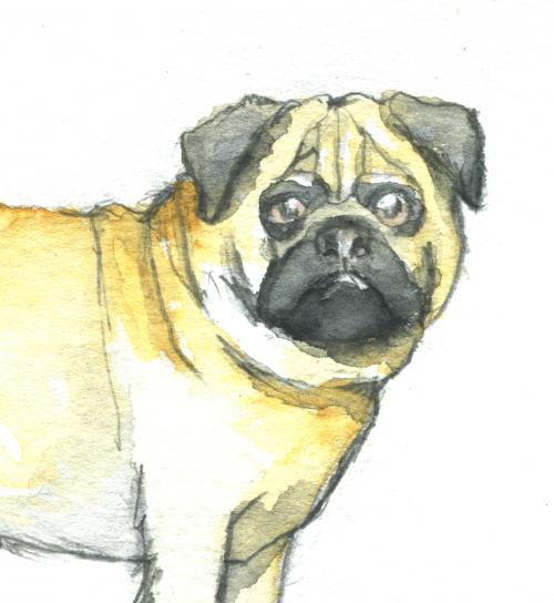 Hunde-Illustrationen